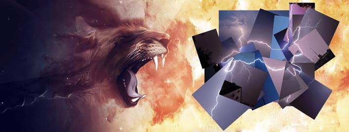 獅子は兎に見えるものを倒すのにも全力を尽くす