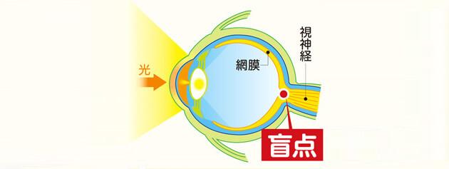 盲点の解説図
