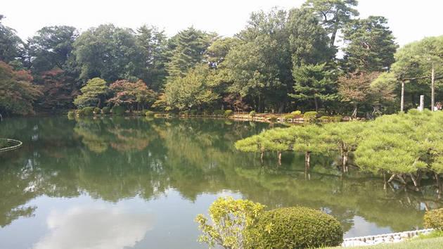 紛うことなき池