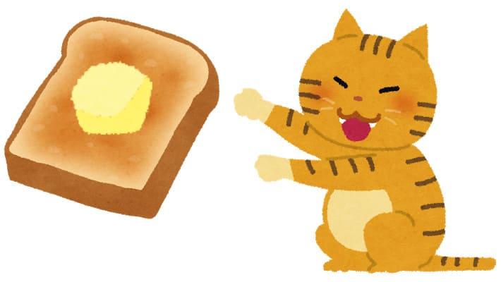 猫にトーストってあげて大丈夫なんだっけ?